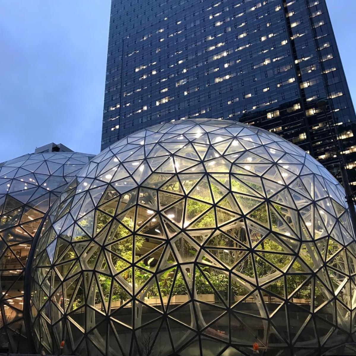 Amazon Spheres Seattle Washington NBBJ Fluoronar Tnemec Lumiflon FEVE Resin