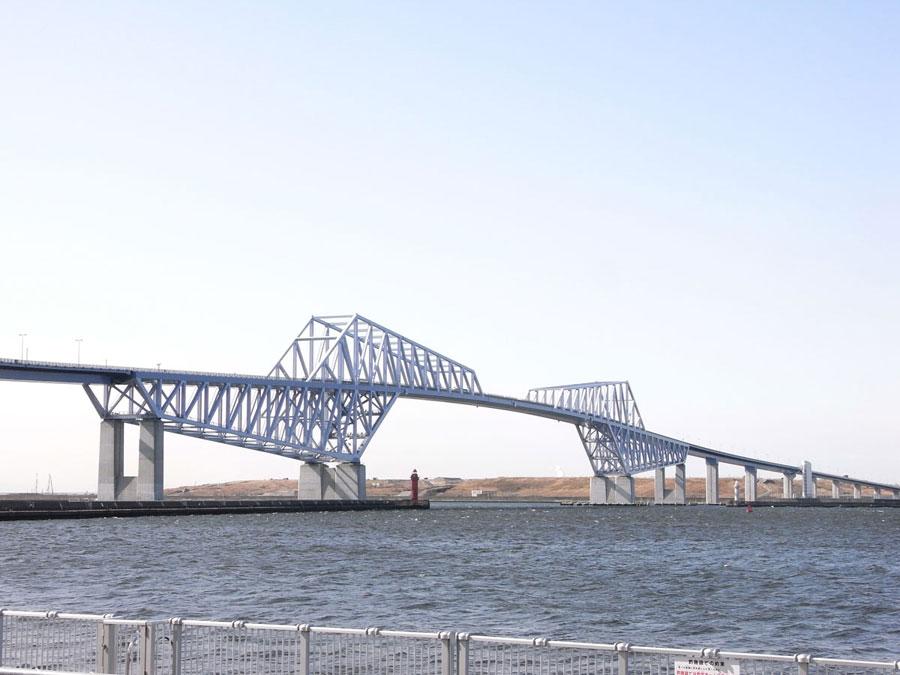 LUMIFLON USA, FEVE Resin, Environmental Coatings, Dinosaur Bridge