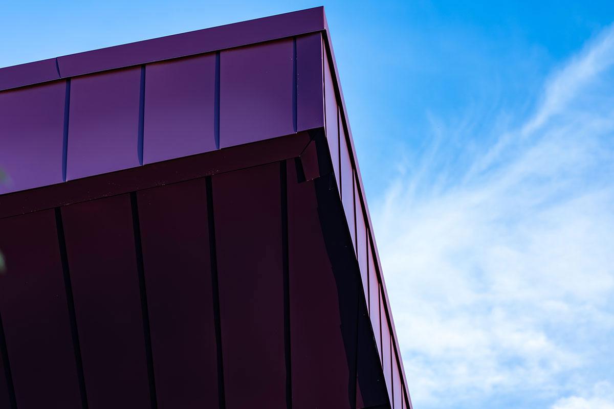 Twin Cities Orthopedics Center, Vikings Museum, Minnesota, Crawford Architects, MG McGrath, Pure Freeform, Phalanx Studios
